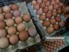 Peniaga menyusun telur untuk dijual kepada orang ramai ketika tinjauan lensa Malaysia Gazette di Pasar Chow Kit, Kuala Lumpur. foto FAREEZ FADZIL, 06 JANUARI 2019
